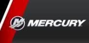 Service Mercury